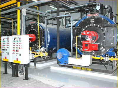 gas fired steam boiler india